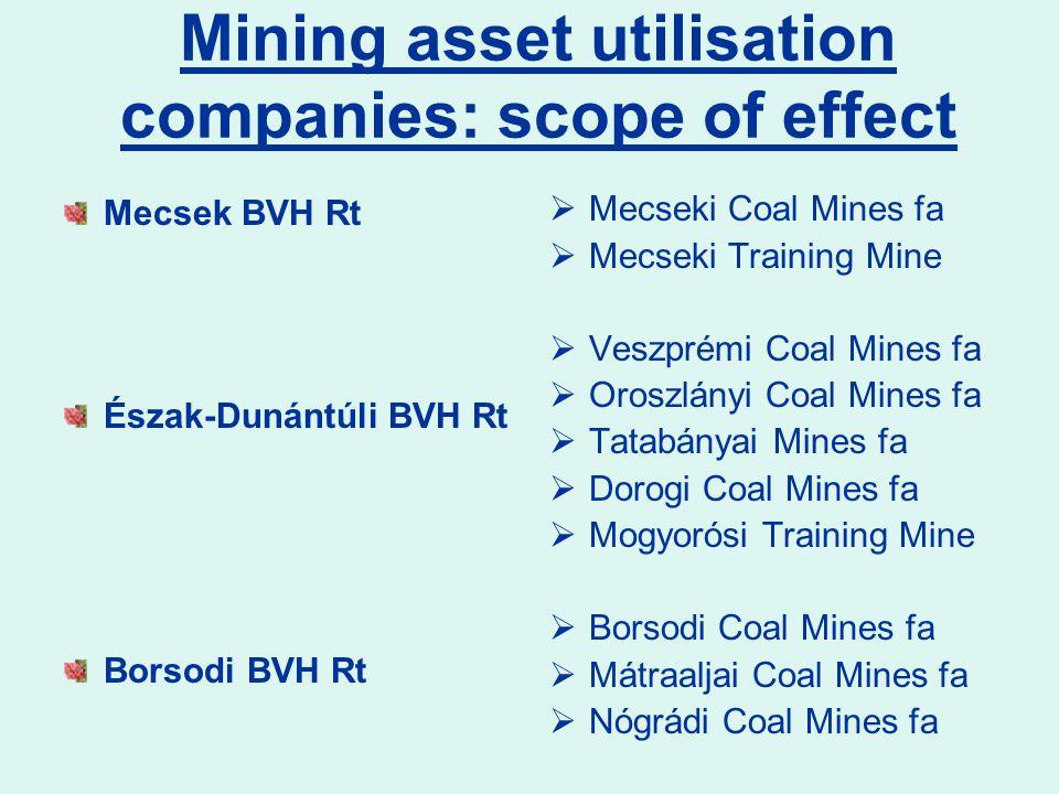 Mining asset utilisation companies: scope of effect Mecsek BVH Rt Észak-Dunántúli BVH Rt Borsodi BVH Rt  Mecseki Coal Mines fa  Mecseki Training Min