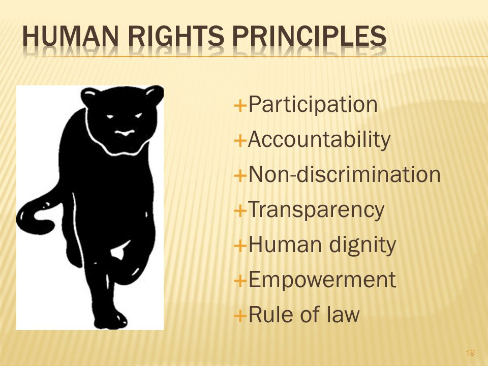  Participation  Accountability  Non-discrimination  Transparency  Human dignity  Empowerment  Rule of law 19
