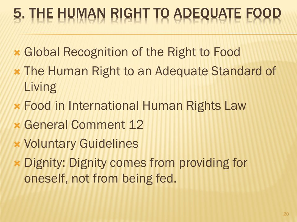  Global Recognition of the Right to Food  The Human Right to an Adequate Standard of Living  Food in International Human Rights Law  General Comment 12  Voluntary Guidelines  Dignity: Dignity comes from providing for oneself, not from being fed.