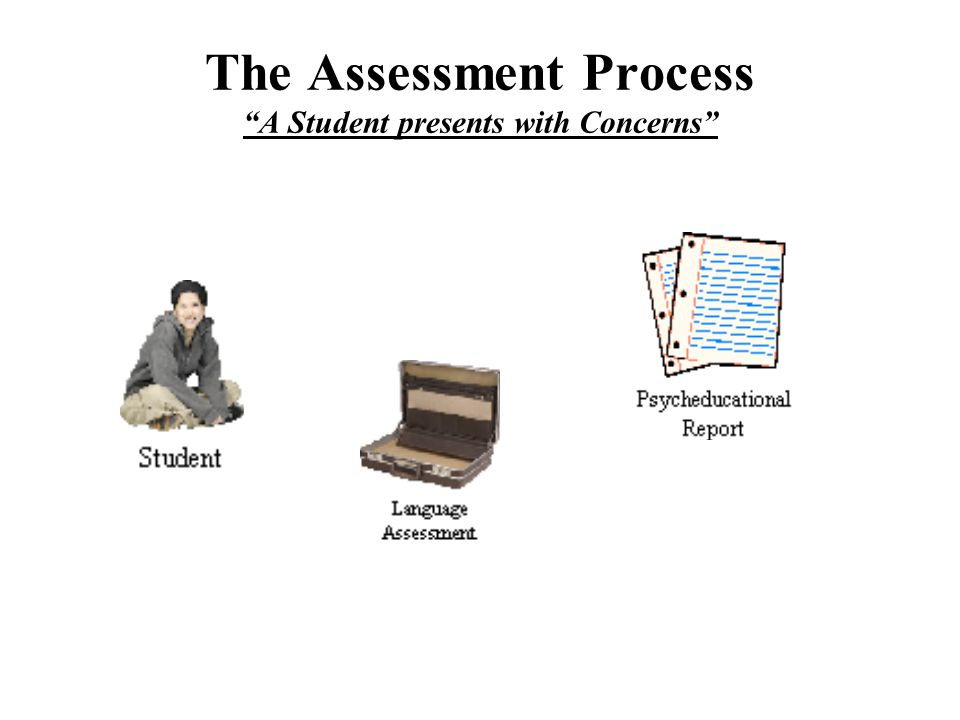 "The Assessment Process ""A Student presents with Concerns"""