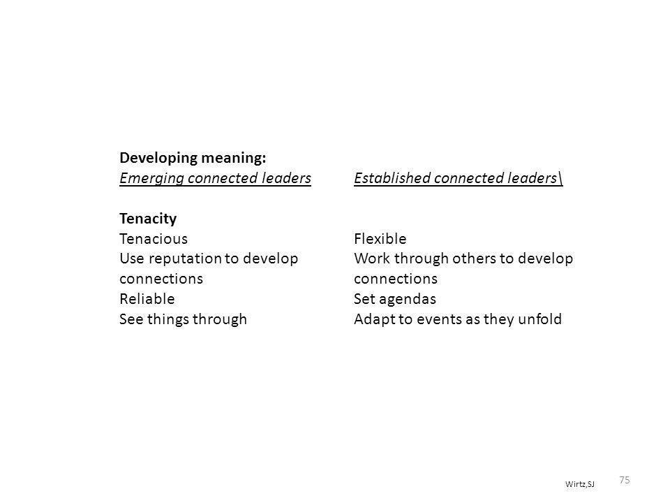 Wirtz,SJ Developing meaning: Emerging connected leaders Established connected leaders\ Tenacity TenaciousFlexible Use reputation to developWork through others to developconnections ReliableSet agendas See things throughAdapt to events as they unfold 75