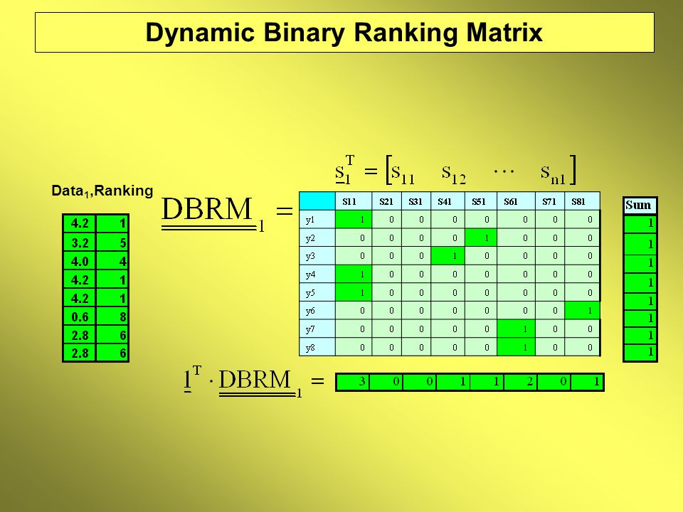 Dynamic Binary Ranking Matrix Data 1,Ranking