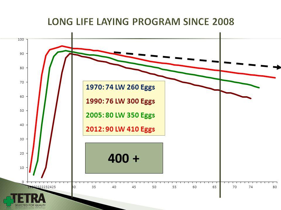 400 + 1970: 74 LW 260 Eggs 1990: 76 LW 300 Eggs 2005: 80 LW 350 Eggs 2012: 90 LW 410 Eggs