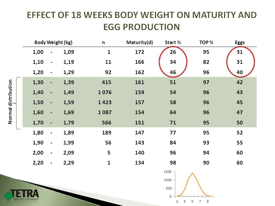 Body Weight (kg)nMaturity(d)Start %TOP %Eggs 1,00 -1,09 1172269531 1,10 -1,19 11166348231 1,20 -1,29 92162469640 1,30 -1,39 415161519742 1,40 -1,49 1 076159549643 1,50 -1,59 1 423157589645 1,60 -1,69 1 087154649647 1,70 -1,79 566151719550 1,80 -1,89 189147779552 1,90 -1,99 56143849355 2,00 -2,09 5140969460 2,20 -2,29 1134989060 EFFECT OF 18 WEEKS BODY WEIGHT ON MATURITY AND EGG PRODUCTION Normal distribution