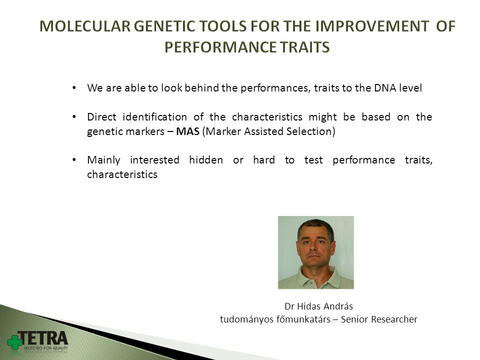 Dr Hidas András tudományos főmunkatárs – Senior Researcher We are able to look behind the performances, traits to the DNA level Direct identification of the characteristics might be based on the genetic markers – MAS (Marker Assisted Selection) Mainly interested hidden or hard to test performance traits, characteristics