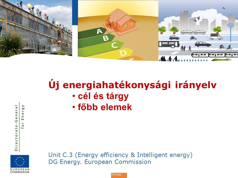 Energy Unit C.3 (Energy efficiency & Intelligent energy) DG Energy.