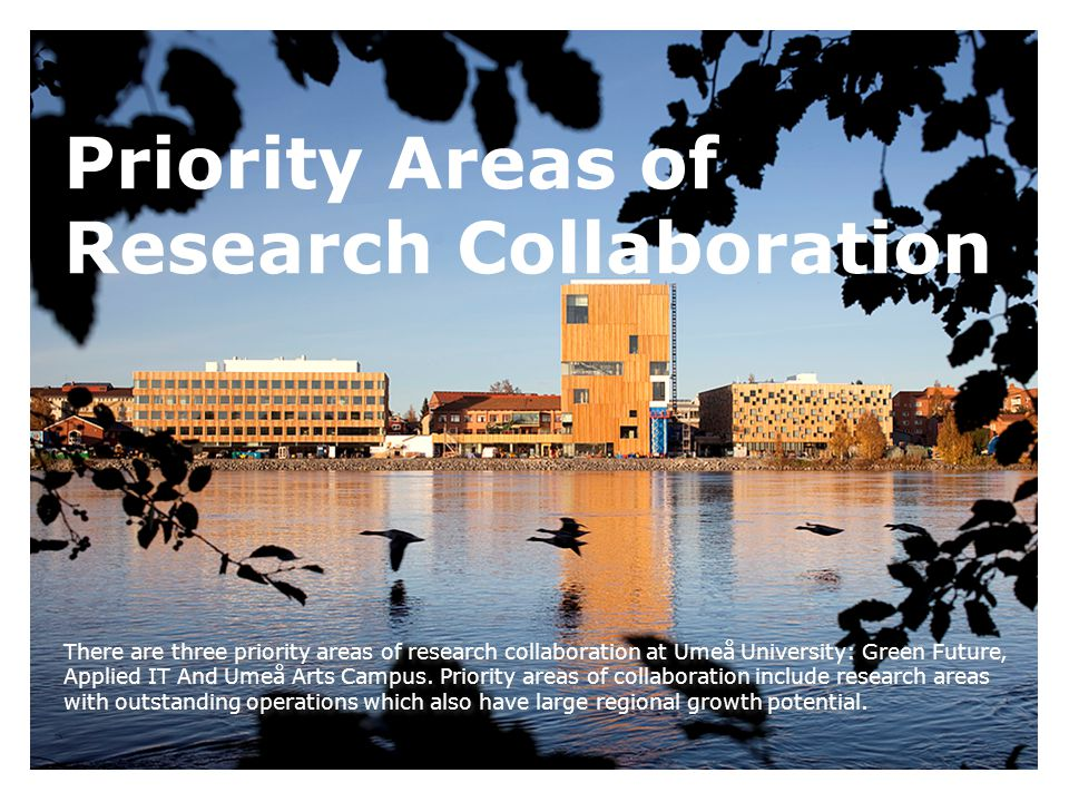 Priority Areas of Research Collaboration There are three priority areas of research collaboration at Umeå University: Green Future, Applied IT And Umeå Arts Campus.