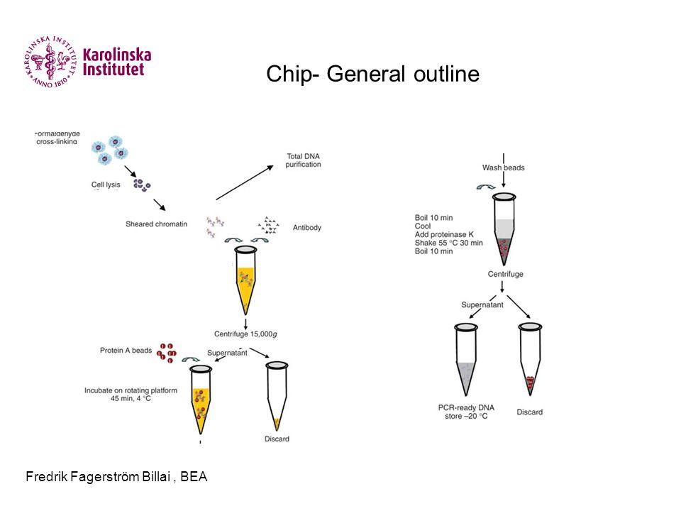 Fredrik Fagerström Billai, BEA Chip- General outline
