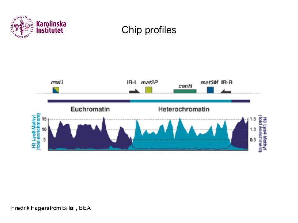 Fredrik Fagerström Billai, BEA Chip profiles