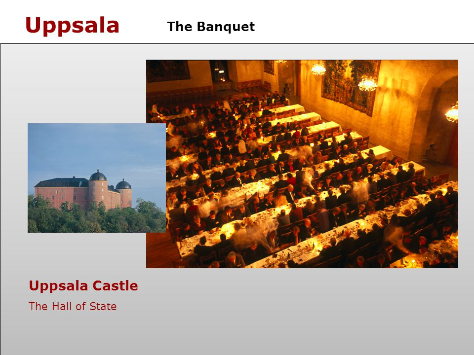 Uppsala The Banquet Uppsala Castle The Hall of State