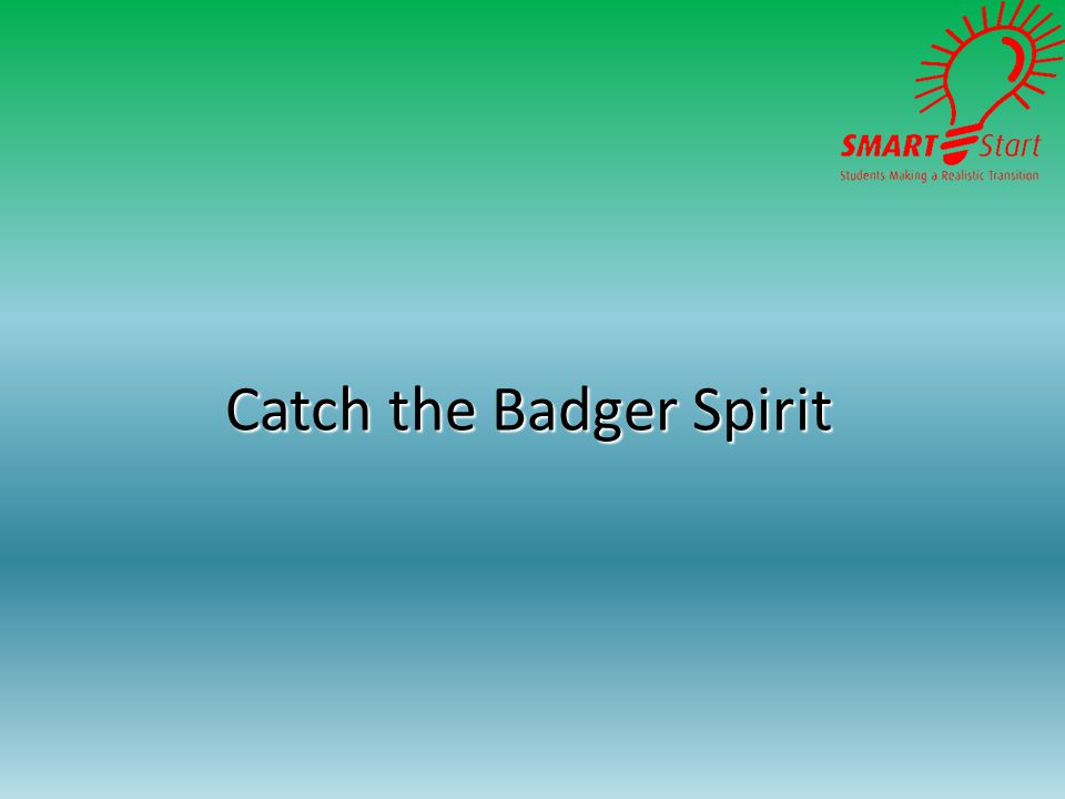 Catch the Badger Spirit