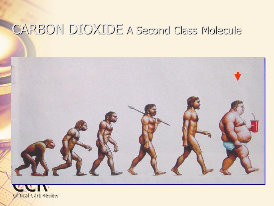 CARBON DIOXIDE A Second Class Molecule