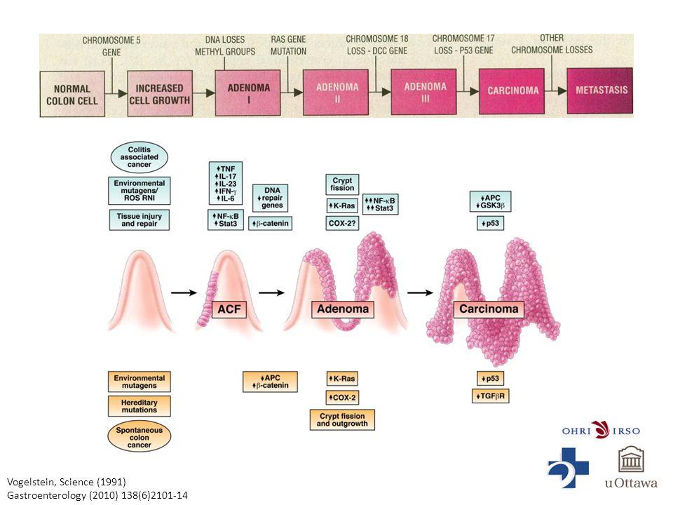 Vogelstein, Science (1991) Gastroenterology (2010) 138(6)2101-14