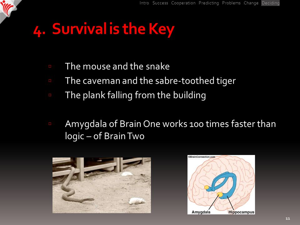 Intro Success Cooperation Predicting Problems Change Deciding 4. Survival is the Key  The mouse and the snake  The caveman and the sabre-toothed tig