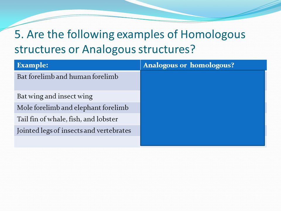5. Are the following examples of Homologous structures or Analogous structures? Example:Analogous or homologous? Bat forelimb and human forelimbhomolo
