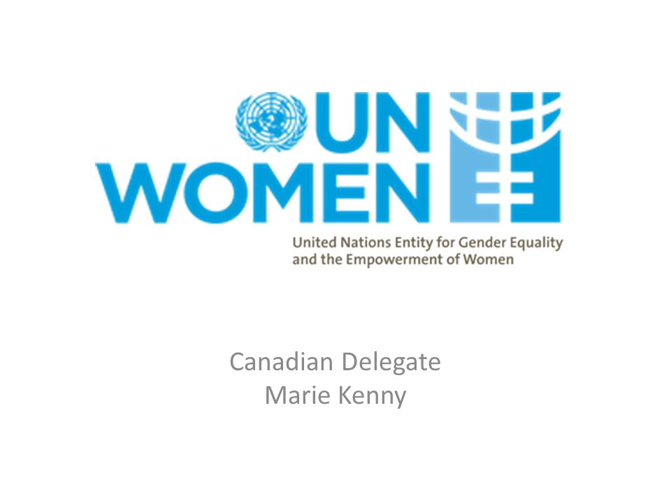 UN Commission on the Status of Women A global policy-making body A functional commission of the United Nations Economic and Social Council, dedicated exclusively to the promotion of gender equality and the advancement of women.