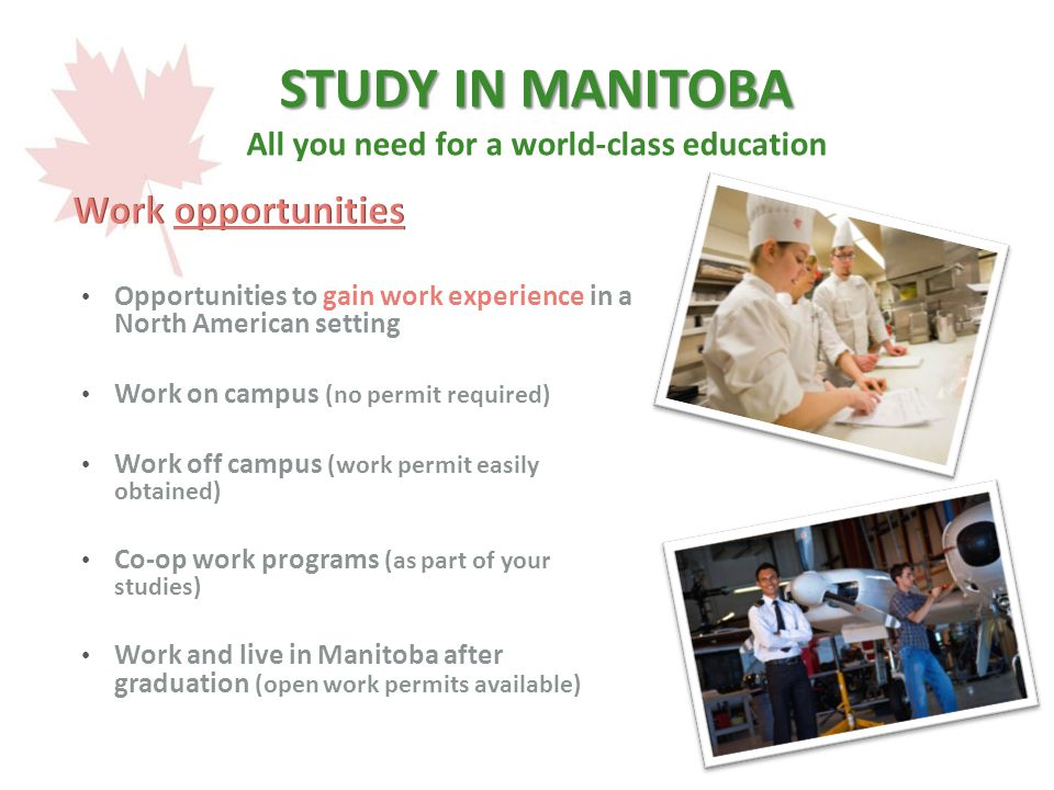 STUDY IN MANITOBA STUDY IN MANITOBA All you need for a world-class education Opportunities to gain work experience in a North American setting Work on campus (no permit required) Work off campus (work permit easily obtained) Co-op work programs (as part of your studies) Work and live in Manitoba after graduation (open work permits available)