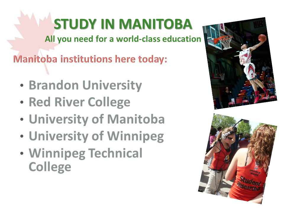 STUDY IN MANITOBA STUDY IN MANITOBA All you need for a world-class education Brandon University Red River College University of Manitoba University of Winnipeg Winnipeg Technical College