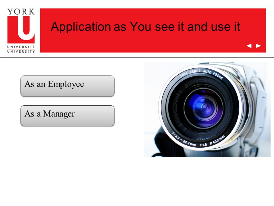 Application as You see it and use it As an Employee As a Manager