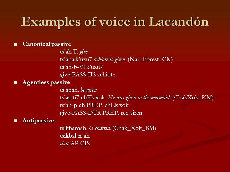 The questions Do Lacandón women use passive voice more than men.
