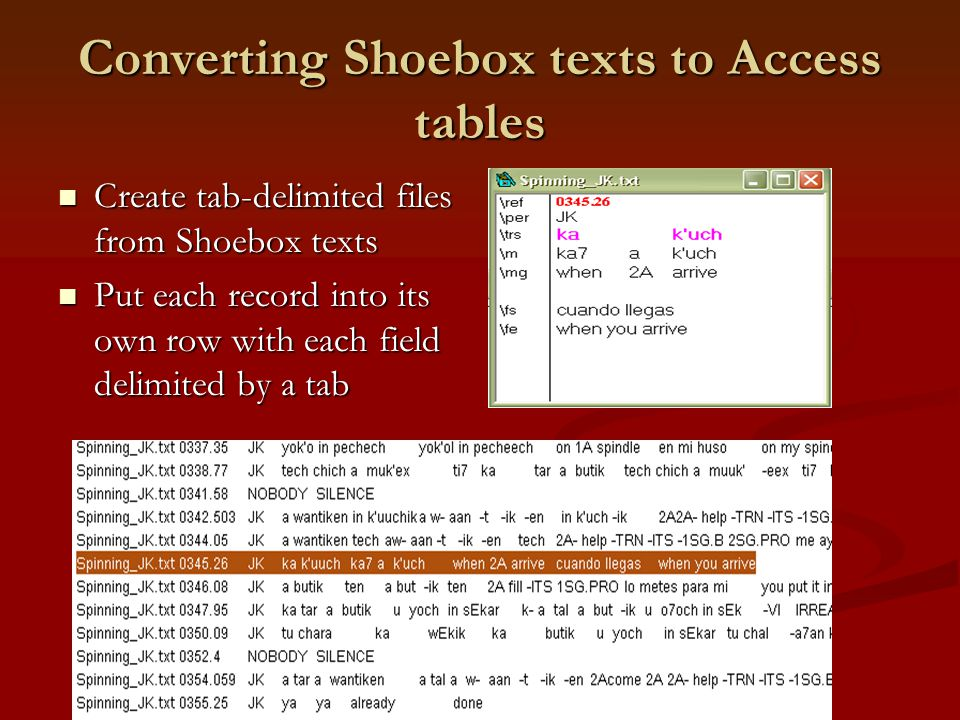 Converting Shoebox texts to Access tables Create tab-delimited files from Shoebox texts Create tab-delimited files from Shoebox texts Put each record into its own row with each field delimited by a tab Put each record into its own row with each field delimited by a tab