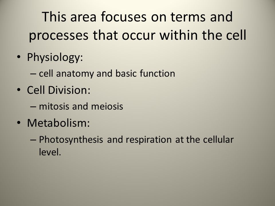 This area focuses on terms and processes that occur within the cell Physiology: – cell anatomy and basic function Cell Division: – mitosis and meiosis Metabolism: – Photosynthesis and respiration at the cellular level.