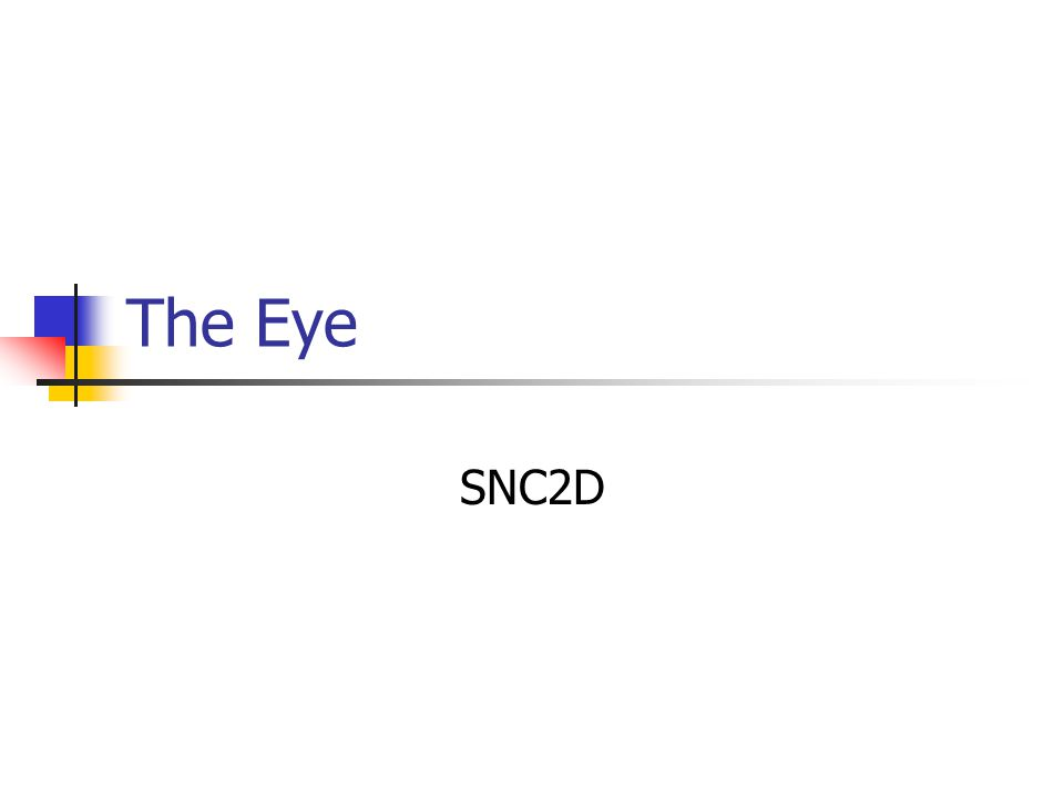 The Eye SNC2D