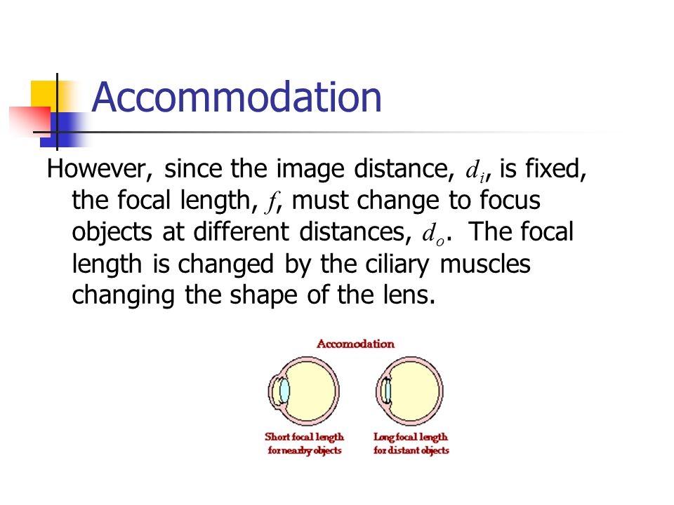 Accommodation However, since the image distance, d i, is fixed, the focal length, f, must change to focus objects at different distances, d o.