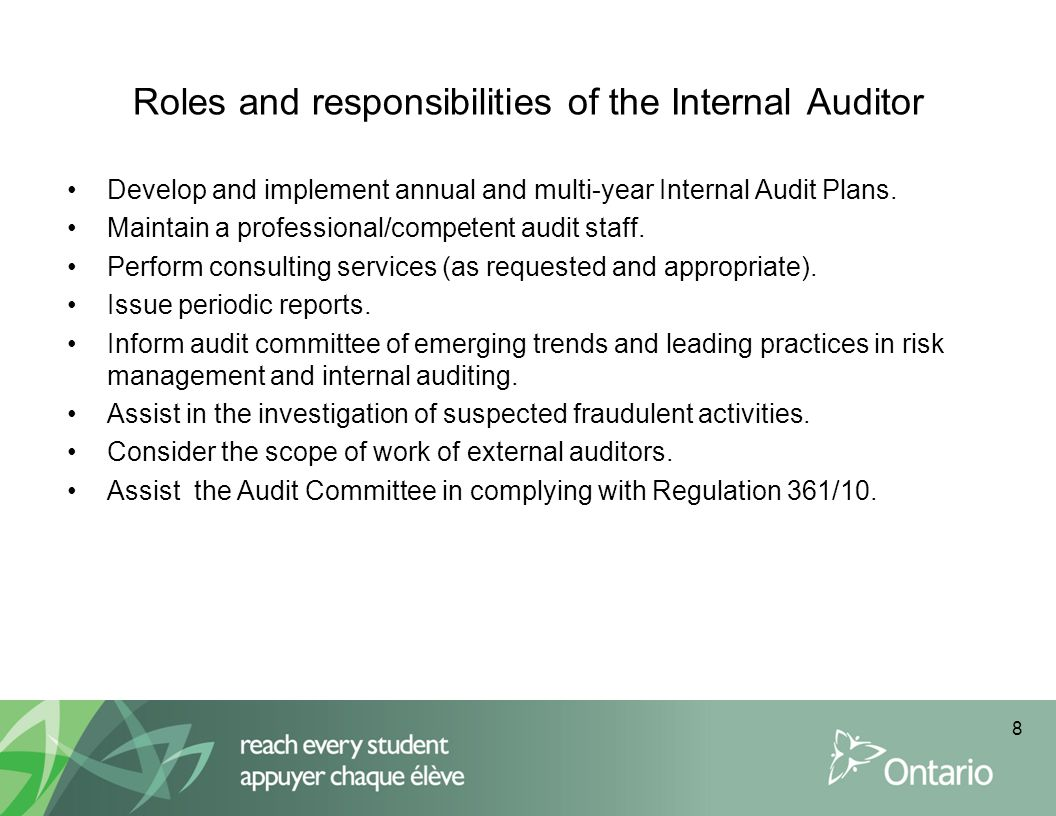 Audit planning Annually, the RIAM shall submit to the director of education, senior business official and audit committee of each DSB a summary of the audit plan (current year work schedule and multi-year plan), staffing plan, and budget for the following fiscal year.