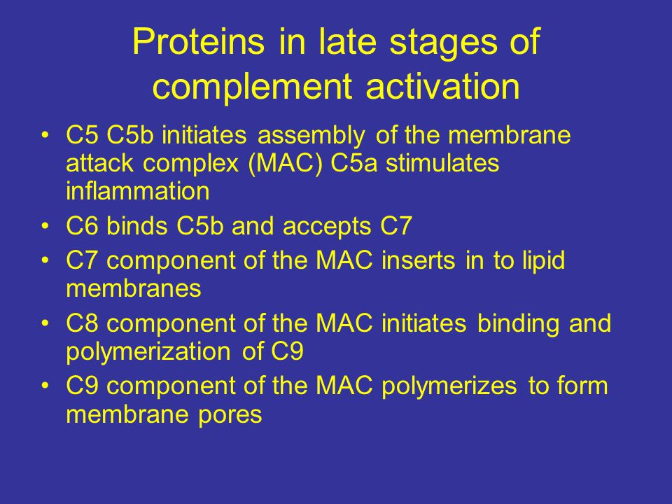 Proteins in late stages of complement activation C5 C5b initiates assembly of the membrane attack complex (MAC) C5a stimulates inflammation C6 binds C