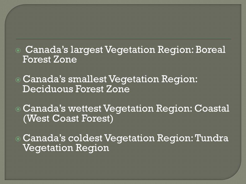  Canada's largest Vegetation Region: Boreal Forest Zone  Canada's smallest Vegetation Region: Deciduous Forest Zone  Canada's wettest Vegetation Region: Coastal (West Coast Forest)  Canada's coldest Vegetation Region: Tundra Vegetation Region