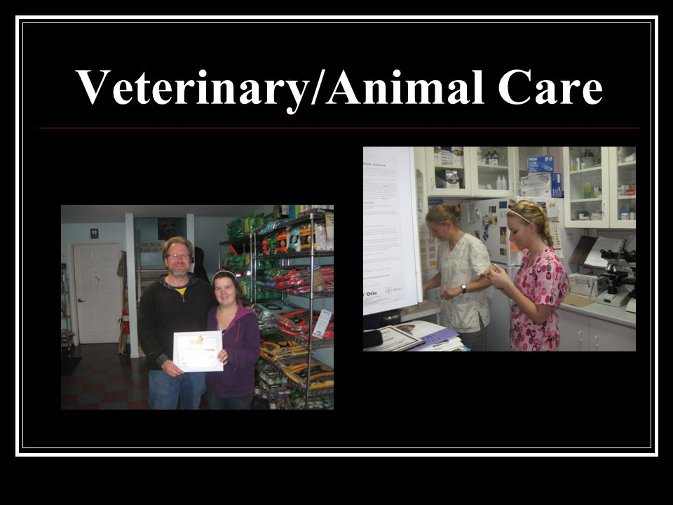 Veterinary/Animal Care