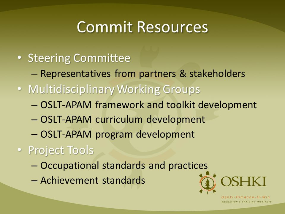 Commit Resources Steering Committee Steering Committee – Representatives from partners & stakeholders Multidisciplinary Working Groups Multidisciplina