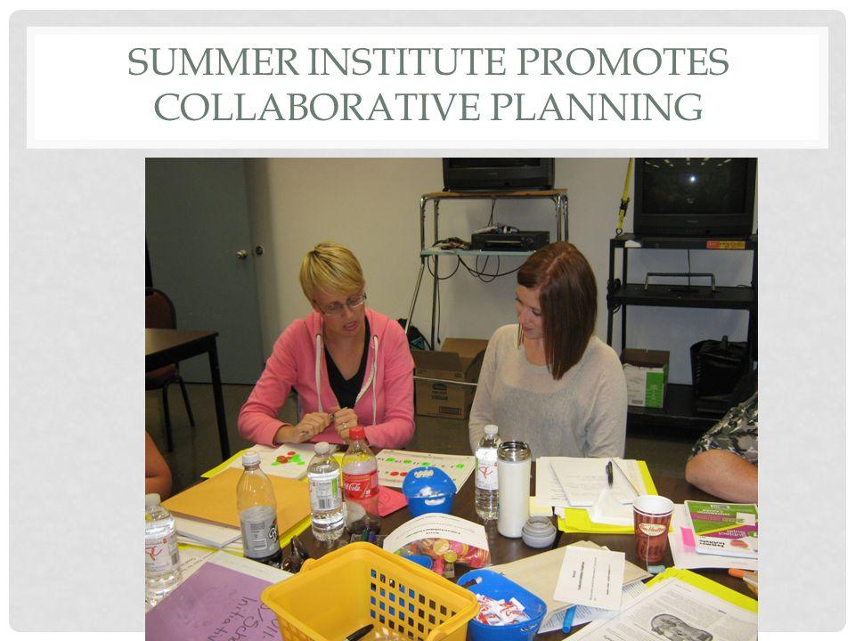 SUMMER INSTITUTE PROMOTES COLLABORATIVE PLANNING