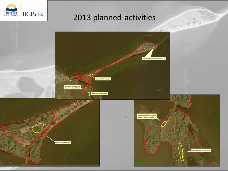 2013 planned activities