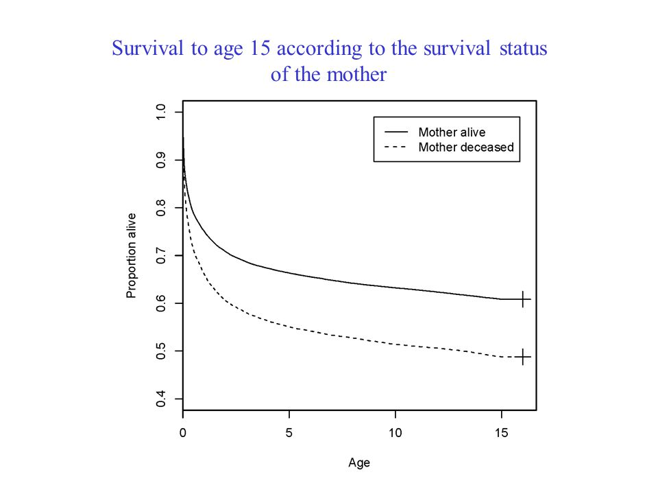 Survival to age 15 according to the survival status of the mother
