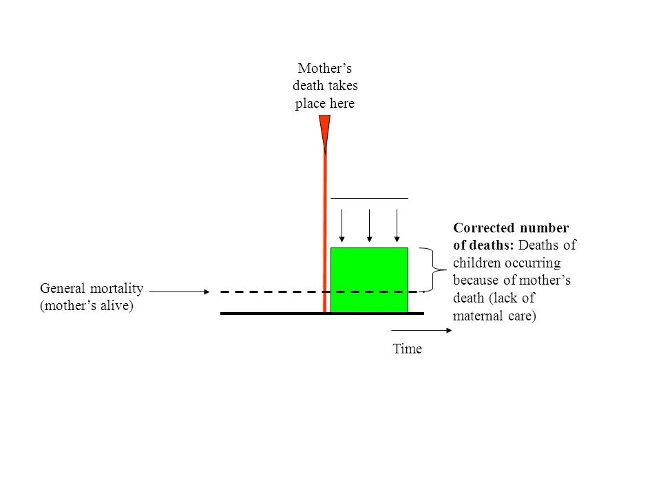 Conclusion Mother's death and child survival: –The younger was the child when losing his/her mother, the higher was the risk –But significantly diminished chances for survival over all childhood Sex differentials and sibling care : –Boys generally had a higher mortality –They died sooner than girls (endogenous causes) –But girls seemed to be more affected by mother's death (two hypotheses) –Older sisters appeared to offer a protector effect
