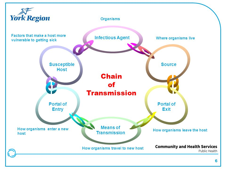 Breaking the Chain Identify/manage the agent Reduce the reservoir Identify mode of transmission and prevent spread Reduce host susceptibility