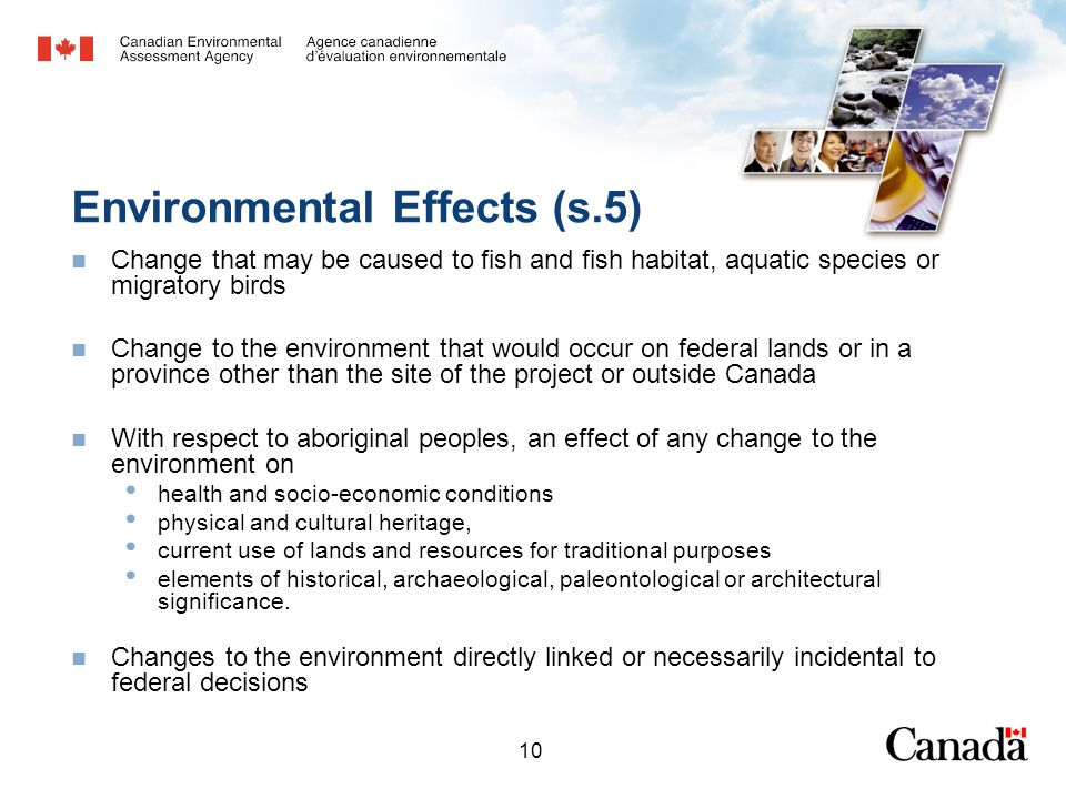10 Environmental Effects (s.5) Change that may be caused to fish and fish habitat, aquatic species or migratory birds Change to the environment that w