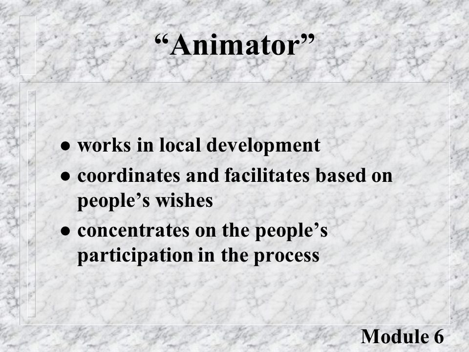 Animator l works in local development l coordinates and facilitates based on people's wishes l concentrates on the people's participation in the process Module 6
