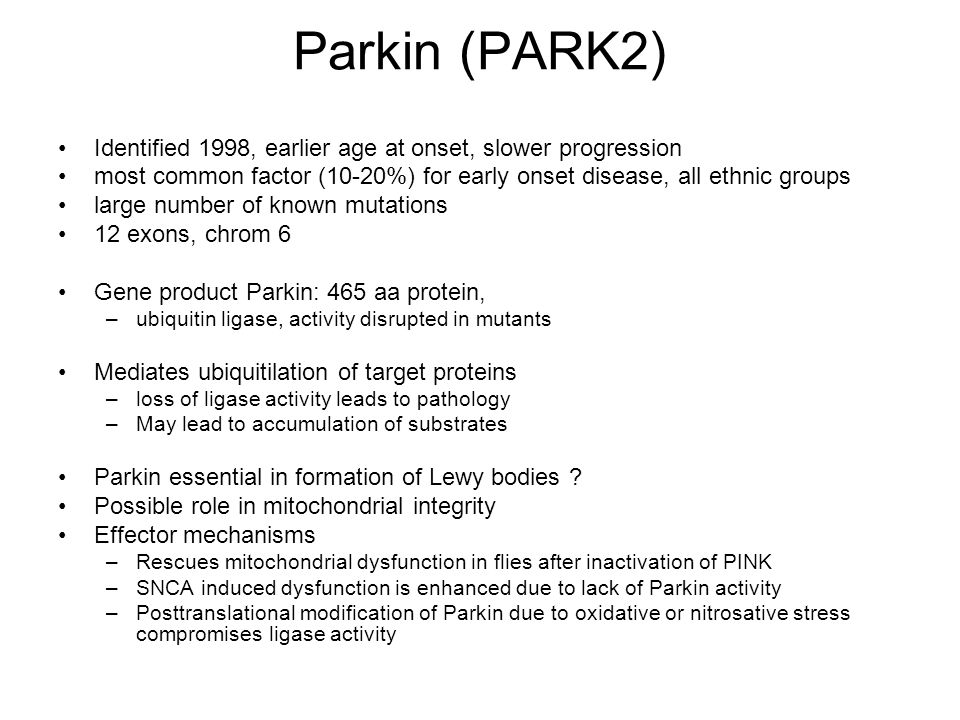 Parkin (PARK2) Identified 1998, earlier age at onset, slower progression most common factor (10-20%) for early onset disease, all ethnic groups large number of known mutations 12 exons, chrom 6 Gene product Parkin: 465 aa protein, –ubiquitin ligase, activity disrupted in mutants Mediates ubiquitilation of target proteins –loss of ligase activity leads to pathology –May lead to accumulation of substrates Parkin essential in formation of Lewy bodies .