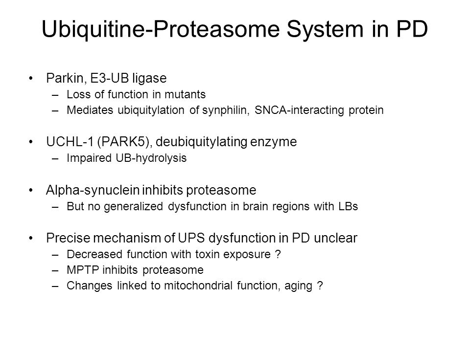 Ubiquitine-Proteasome System in PD Parkin, E3-UB ligase –Loss of function in mutants –Mediates ubiquitylation of synphilin, SNCA-interacting protein UCHL-1 (PARK5), deubiquitylating enzyme –Impaired UB-hydrolysis Alpha-synuclein inhibits proteasome –But no generalized dysfunction in brain regions with LBs Precise mechanism of UPS dysfunction in PD unclear –Decreased function with toxin exposure .