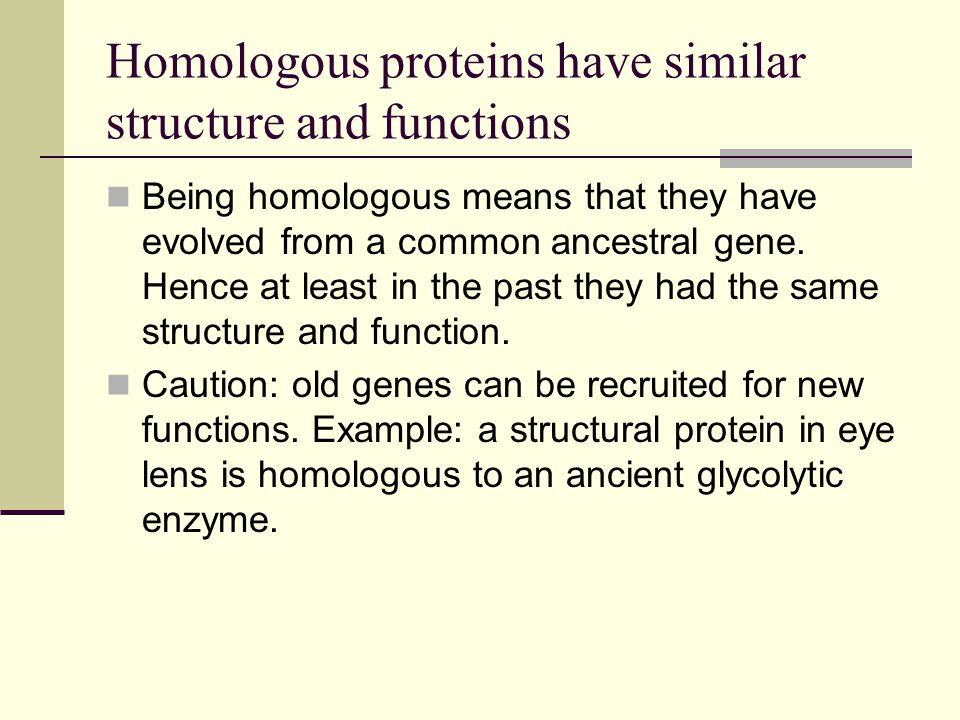 Homologous proteins have similar structure and functions Being homologous means that they have evolved from a common ancestral gene.