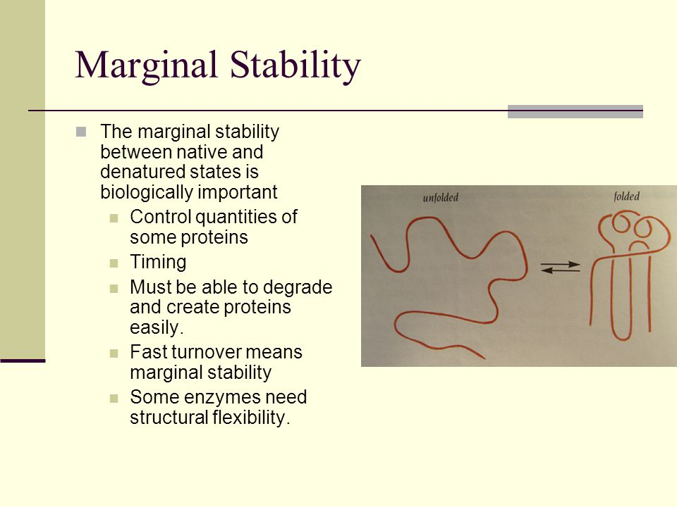 Marginal Stability The marginal stability between native and denatured states is biologically important Control quantities of some proteins Timing Must be able to degrade and create proteins easily.