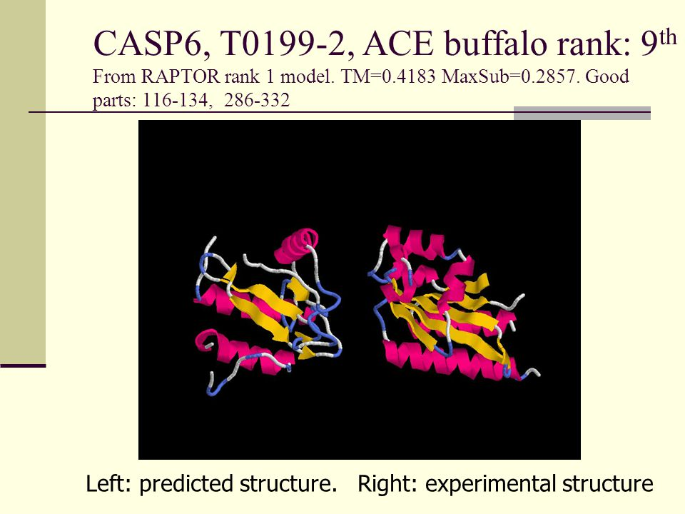 CASP6, T0199-2, ACE buffalo rank: 9 th From RAPTOR rank 1 model.