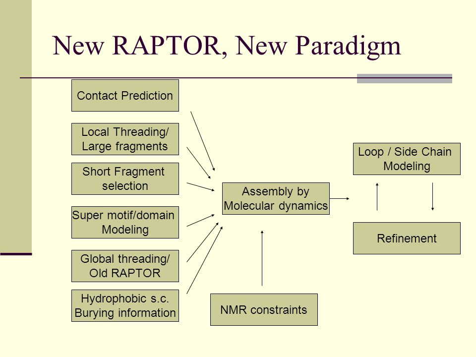 New RAPTOR, New Paradigm Local Threading/ Large fragments Short Fragment selection Super motif/domain Modeling Global threading/ Old RAPTOR Hydrophobic s.c.