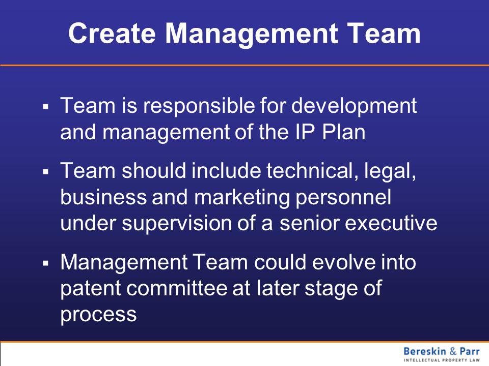 Create Management Team  Team is responsible for development and management of the IP Plan  Team should include technical, legal, business and marketing personnel under supervision of a senior executive  Management Team could evolve into patent committee at later stage of process