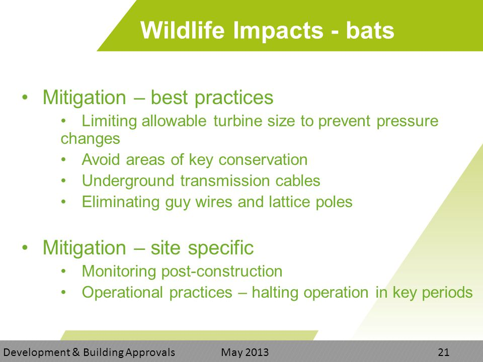 Wildlife Impacts - bats Mitigation – best practices Limiting allowable turbine size to prevent pressure changes Avoid areas of key conservation Underground transmission cables Eliminating guy wires and lattice poles Mitigation – site specific Monitoring post-construction Operational practices – halting operation in key periods Development & Building Approvals May