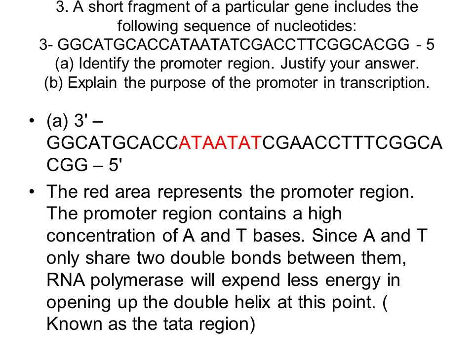 3. A short fragment of a particular gene includes the following sequence of nucleotides: 3- GGCATGCACCATAATATCGACCTTCGGCACGG - 5 (a) Identify the prom