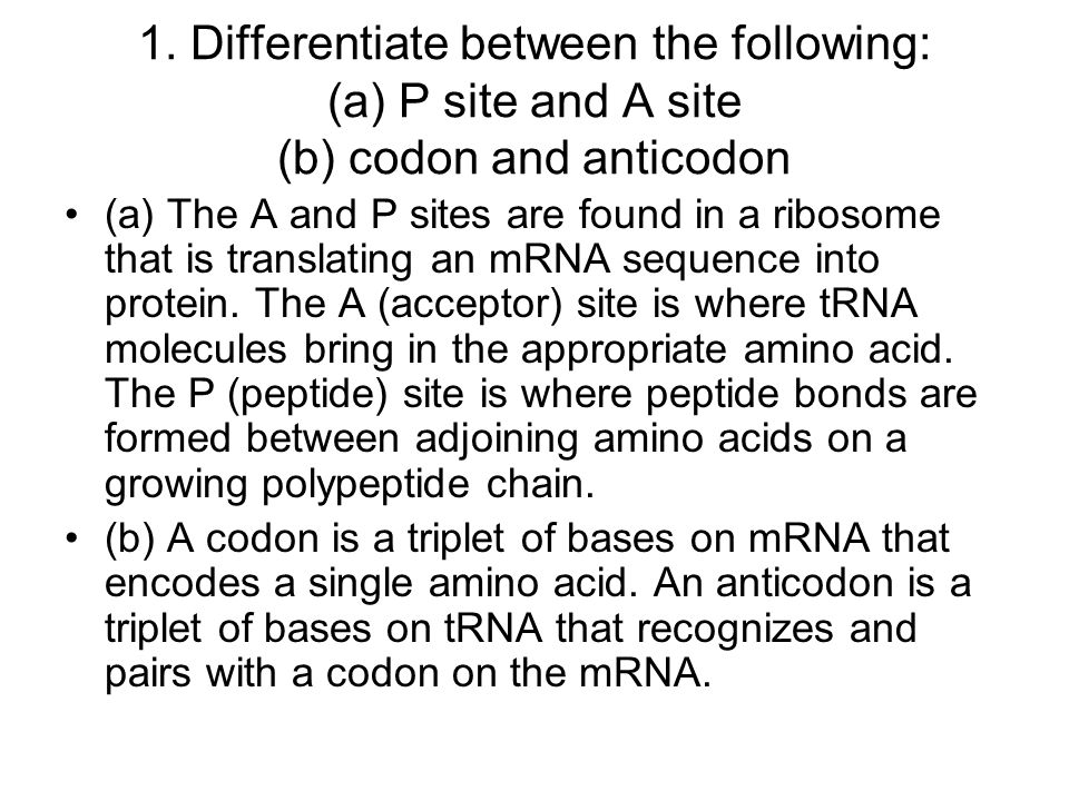 1. Differentiate between the following: (a) P site and A site (b) codon and anticodon (a) The A and P sites are found in a ribosome that is translatin